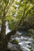 Waterfall on River Hermon ,Banias Nature Reserve in northern Israel — Stock Photo