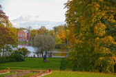Autumn View in the Park — Stock Photo