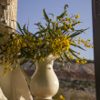 Pitcher with yellow flowers on the window — Stock Photo #43985549