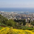 View to Haifa City,Sea and Haifa Bay.Israel — Stock Photo #48058117