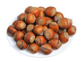 Hazelnuts, isolated — Stock Photo