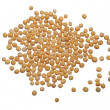 Mustard seeds — Stock Photo #25930509