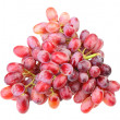 Branch of fresh red grape — Stock Photo