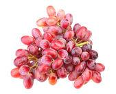 Oddział świeżych winogron — Zdjęcie stockowe