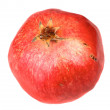 Single fresh red pomegranate — Stock Photo