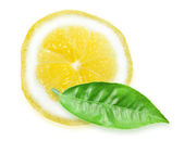 Slice of yellow lemon and green leaf — Stock Photo