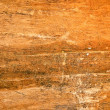 Original texture old wood — Stock Photo #1009718