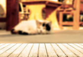 Cat lying in the street near cafe table — Foto Stock