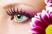 Beauty female eye Makeup — Stock Photo