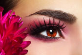 Beautiful Eye Makeup with Aster Flower — Stock Photo