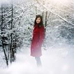 Beautiful elegant woman in red coat — Stock Photo #14746649
