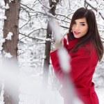 Beautiful elegant woman in red coat. winter nature — Stock Photo #14746657