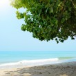 Tropical beach. Koh Chang — Stock Photo #41971375