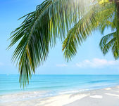 Tropical beach. Koh Chang — Stock Photo