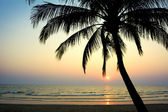 Tropical beach. Thailand — Stock Photo