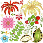 Set colorful floral design elements — Stock Vector