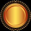 Bronze round frame — Stock Vector #25229285