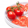 Ripe tomato on food dehydrator tray — Stock Photo