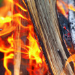 Bonfire close-up view — Stock Photo