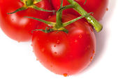 Ripe tomato with water drops. Close-up view. — Stock Photo
