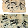 Blue cheeses — Stock Photo #49648533