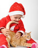 Christmas toddler child plays with a cat — Stock Photo