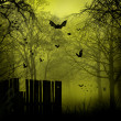 Abstract Halloween backgrounds with copy space for your design - Stock Photo