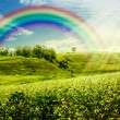 Stock Photo: Rainbow on the meadow.
