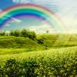 Rainbow on the meadow. — Stock Photo