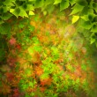 Beauty Nature. Abstract natural backgrounds for your design — Stockfoto