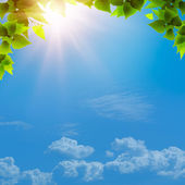 Sotto il cielo blu. — Foto Stock
