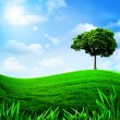 Green hills under the blue sky, — Stock Photo