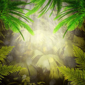 Early morning in the tropical forest. — Stock Photo