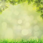 Abstract natural backgrounds with beauty bokeh for your design — Stock Photo