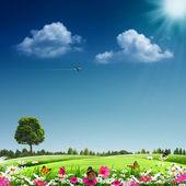Sommerzeit. abstrakte Eco Hintergründe für Ihr design — Stockfoto