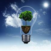 Energy savings and eco background — Stock Photo