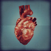 Human heart vintage blueprint. — Stock Photo