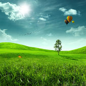 Beauty meadow. Abstract summer landscape for your design — Stock Photo