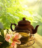 Te ceremoni. grönt te, blomma och tekanna — Stockfoto
