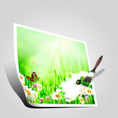 Beautiful spring backgrounds with chamomile flowers — Stock Photo