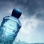 Purified spring water in the bottle — Stock Photo
