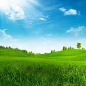 Güzellik yaz günü yeşil tepeler üzerinde — Stok fotoğraf