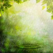 Lluvia de verano. Resumen Antecedentes naturales — Foto de Stock