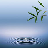 抽象的环境背景与竹和水滴 — 图库照片