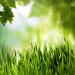 Green world, abstract environmental backgrounds for your design — 图库照片