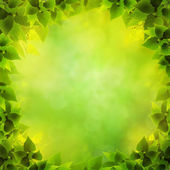 Abstract natural backgrounds with green foliage as shape — Stock Photo
