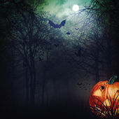 Abstract Halloween backgrounds for your design — Stock Photo