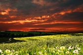 Dramatic sunset over hilly meadow, environmental backgrounds — Stock Photo