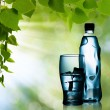 Spring mineral water bottled with glass and ice against natural — Stock Photo