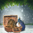 Abstract winter and Xmas backgrounds with funny animals   — Photo